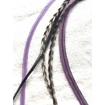 Extensions de Plumes Fée Violet