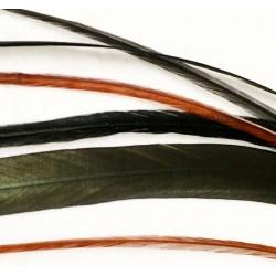 Fée Corbeau - 6 plumes unitaires