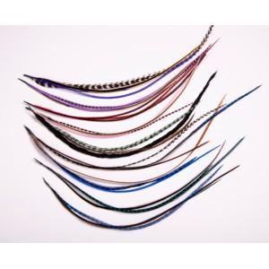 Kit 10 extensions de 4 plumes pour cheveux courts