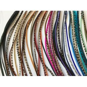 SALON DE COIFFURE - 15 Mèches de 4 Plumes 6'-12' - Naturelles et Colorées - Kit Inclus