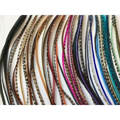 Kit 10 mèches de 4 plumes pour cheveux longs