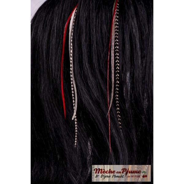 plumes pour cheveux rouge et grizzly glace rouge. Black Bedroom Furniture Sets. Home Design Ideas