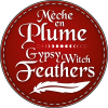 Mèche en Plume - Gypsy Witch Feathers