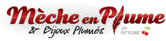 Mèche en Plume & Bijoux Plumés